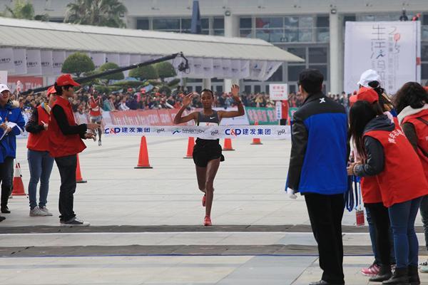 Sado Xiamen 2013