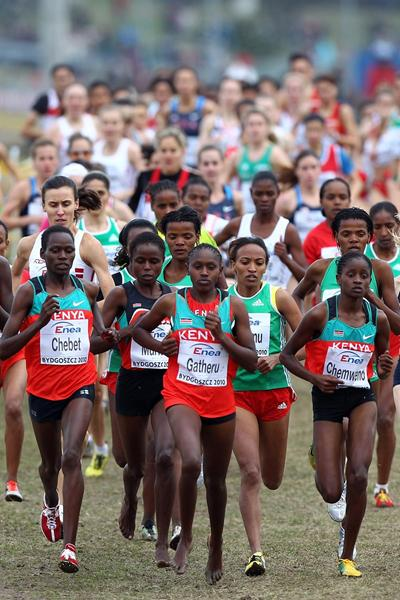 IAAF cross country championship