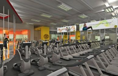 vista golds gym