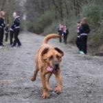 Ledivine la perra corredora