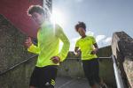 zonas de entrenamientos cardiovascular