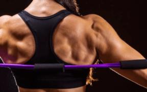 Ejercicio y Masa muscular